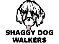 SHAGGY DOG WALKERS - DOG WALKING SERVICES