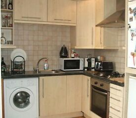 Lovely 2-bed flat in Willesden Green NW2