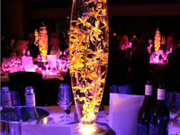 "20"" bullet Vase clear glass for sale $7.50 each centrepiece"