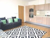 Huge 1 bed flat stunning interior near station!