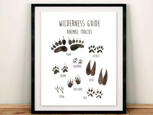 Animal Tracks Wall Art Wilderness Field Guide Boy Nursery Print Home Decor 611-A