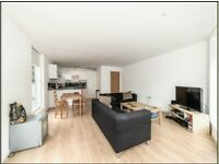 Stunning, Modern 2 Bed Flat- Brixton Hill
