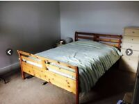 FANTASTIC ROOM AND HOUSE AVAILABLE