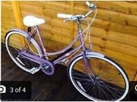 Raleigh Chiltern Serviced Ladies Town