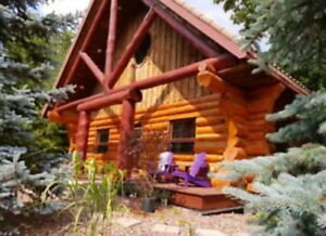 July18-19 special,$298/n.log home , Unique memory this year!