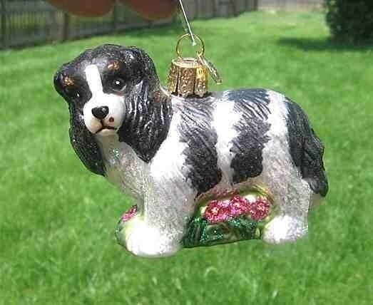 Old World Christmas CAVALIER KING CHARLES Tri color Blown Glass Tree Ornament