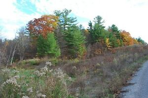 Acreage Near Bobs Lake Kingston Kingston Area image 5