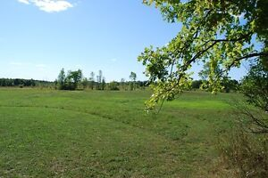 18 Acres in Rideau Lakes Near Westport Kingston Kingston Area image 8