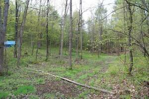 Building Lot with Acreage!