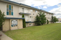 Pinegrove Manor Apartments - 1 Bedroom Apartment for Rent