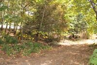 0.30 acre lot with subdivision potential