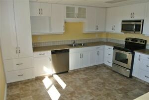 WOW- Beautifully Renovated Townhouse in Town of Swan Hills, AB