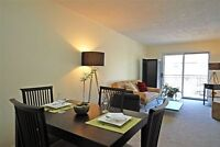 Spacious 1 and 2 BDRM apartments in convenient Kingston area!