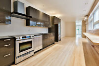 SUMMER SUBLET: huge apt from MAY 1 TO AUGUST 15  (flexible)