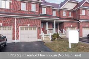 1773 Sq Ft Freehold Town** 3 Bed / 3 Bath** Open Concept**