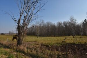 SIMMONS ROAD - LOT 1, LOYALIST