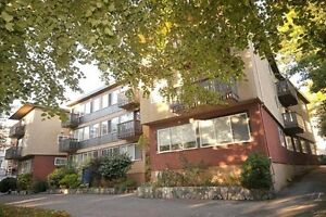 1 Bdrm available at 976 Humboldt Street, Victoria