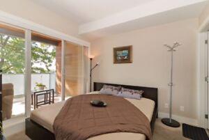Bed Frame and Slats