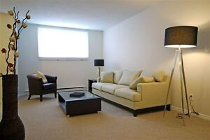51 & 59 Campbell: Apartment for rent in Stratford Stratford Kitchener Area image 5