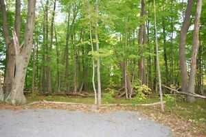 Build Your Dream Home on 2 Acres!! Kingston Kingston Area image 10