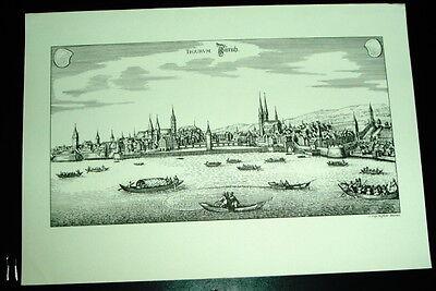 Zürich: alte Ansicht Merian Stich Druck 1650 Panorama