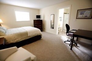 Large quiet furnished bedroom to rent.