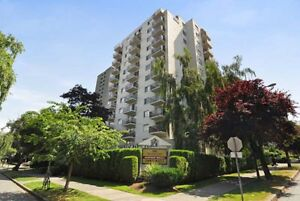 Bachelor available at 990 Broughton Street, Vancouver
