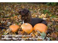 Dog carers, Renfrewshire