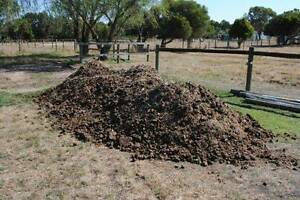 Free Horse Manure Pearcedale Casey Area Preview
