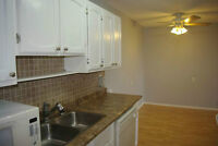2 bedroom Apartment North East Edmonton for Rent 1200!