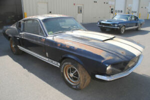NEED OLD CAR MUSTANG SHELBY FASTBACK CHARGER CAMARO GTO GTX CUDA