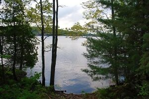 Beautiful 5 acre lot on Fifth Depot Lake!