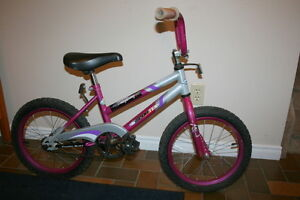 Sportek Li'l Lighting Bike, 16inch Wheels  $45.00