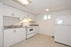 1 Bedroom Basement Apartment in Newmarket