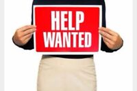 Personal assistant wanted ASAP!!