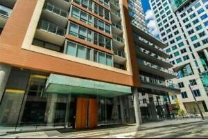 Room For Rent - Downtown Condo - Excellent Location