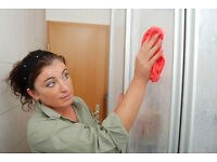 9£/h,Deep Cleaning,Experienced,House Cleaner,Domestic Cleaning,Carpet Cleaning,Cleaning Lady,Iron