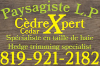 Paysagiste L.P CedarXpert, Hedge & schrub trimming specialist