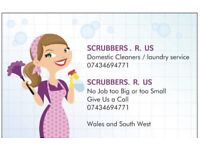 SCRUBBERS R US