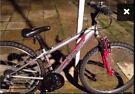 Apollo teenage bike mint condition