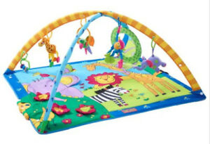 Gymini Super Deluxe Play Mat.