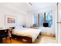 **Modern 2 bedroom penthouse apartment-Tower Bridge Road**