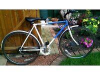 raleigh pioneer bike old skool