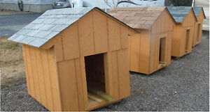 New dog houses