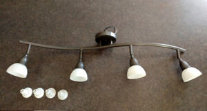 Fixed Track Ceiling Light