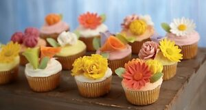 TAKE A CAKE DECORATING COURSE THIS FALL AND WINTER!!! Strathcona County Edmonton Area image 8
