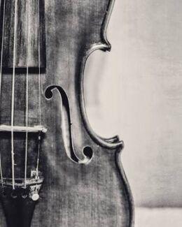 Violin Teacher Wollert Whittlesea Area Preview