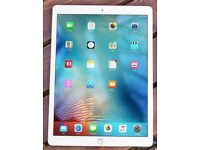 12.9-inch iPad Pro Wi-Fi 32GB - Silver + Apple Pencil and Smart Cover