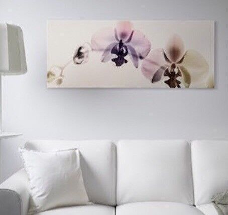 Ikea orchid spectrum print | in London Bridge, London | Gumtree
