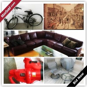 Guelph Downsizing Online Auction - Fieldstone Rd. (May 31)